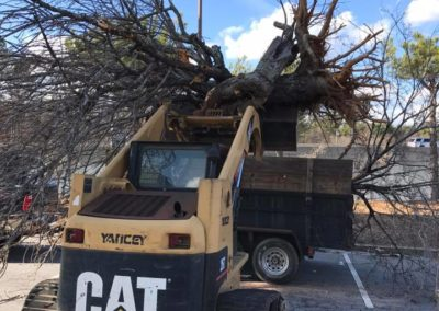 Commercial Roof Debris Cleanup in Gwinnett County GA