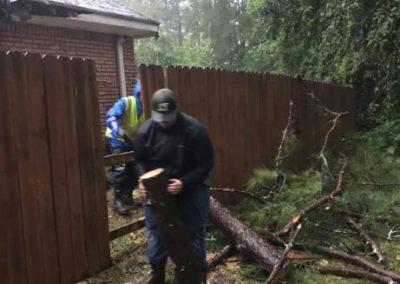 Gwinnett County Emergency Tree Removal Service